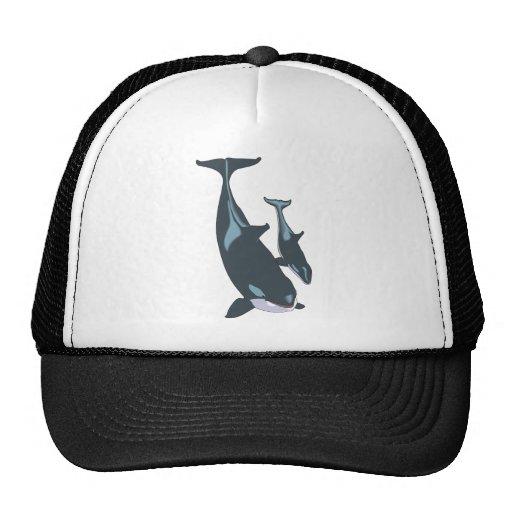 Orca Gorro De Camionero