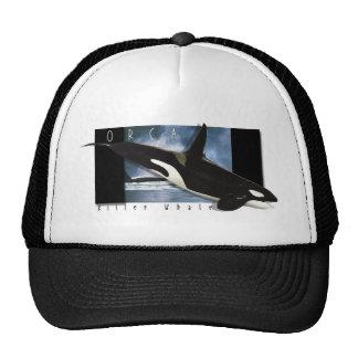 Orca graphic art design hat