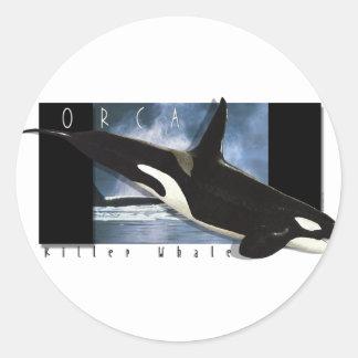 Orca graphic art design classic round sticker