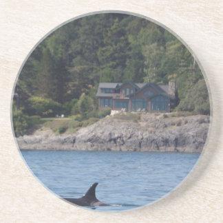 Orca hermosa de la orca en el estado de Washington Posavasos Cerveza