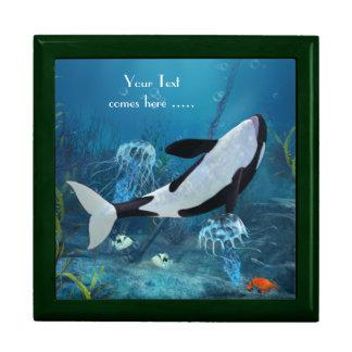 Orca II Gift Box
