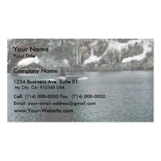 Orca in Prince William Sound Business Cards