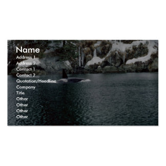 Orca in Prince William Sound Business Card Templates