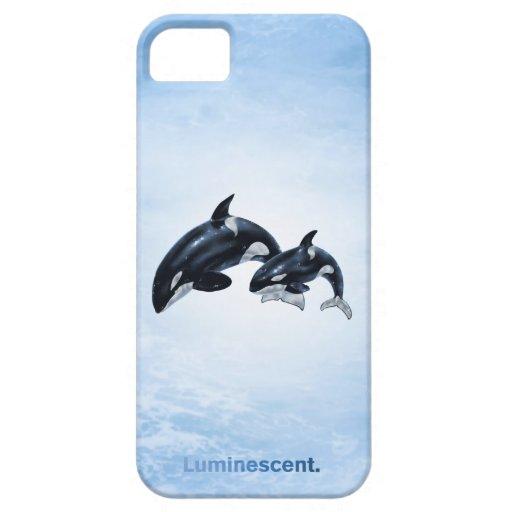 Orca - iPhone 5 Case