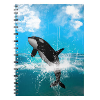Orca jumping spiral note books
