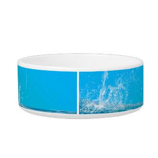 Orca jumping pet bowls