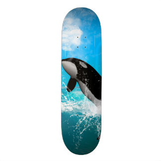 Orca jumping skate boards