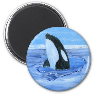 Orca killer whale 2 inch round magnet
