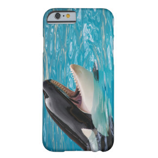 Orca - Killer Whale Barely There iPhone 6 Case