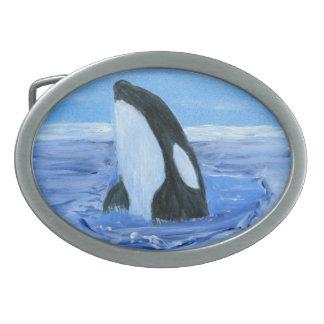 Orca killer whale oval belt buckles