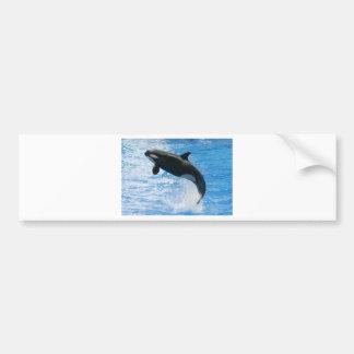 Orca Killer Whale Car Bumper Sticker