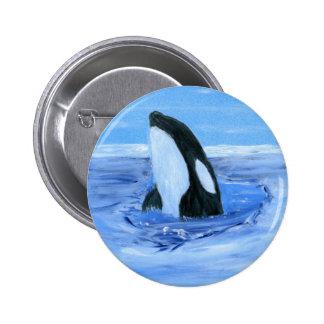 Orca killer whale pins