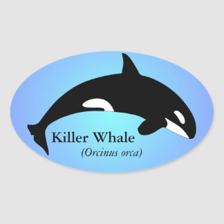 Orca Killer Whale Gradient Blue Oval Sticker