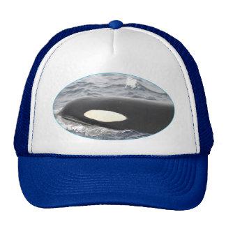 Orca Killer Whale Head - Oval Trucker Hat