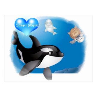 Orca (Killer Whale) I heart designs Postcard