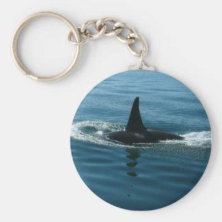 Orca Killer Whale Key Chains