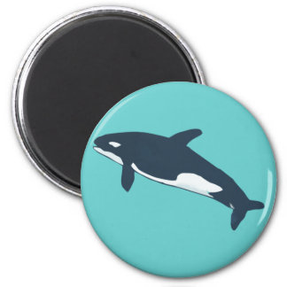 orca killer whale magnete
