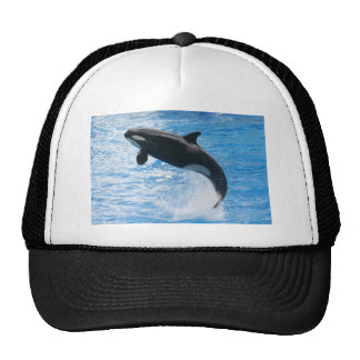 Orca Killer Whale Mesh Hat