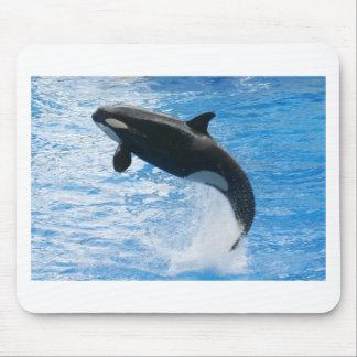 Orca Killer Whale Mouse Pad