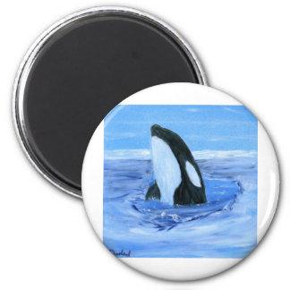 Orca killer whale refrigerator magnet