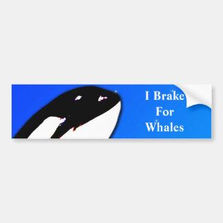 Orca Killer Whale Spy Hops on a Blue Starry Sky Bumper Sticker