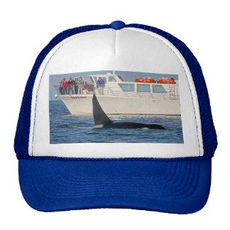Orca Killer Whale -transient, washington Trucker Hat