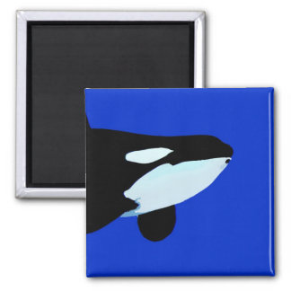 orca killer whale underwater graphic 2 inch square magnet