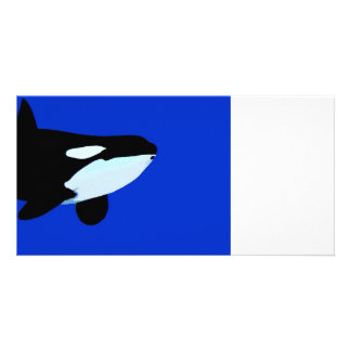 orca killer whale underwater graphic photo cards