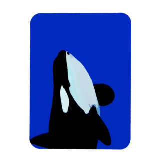 orca killer whale underwater graphic rectangular magnets