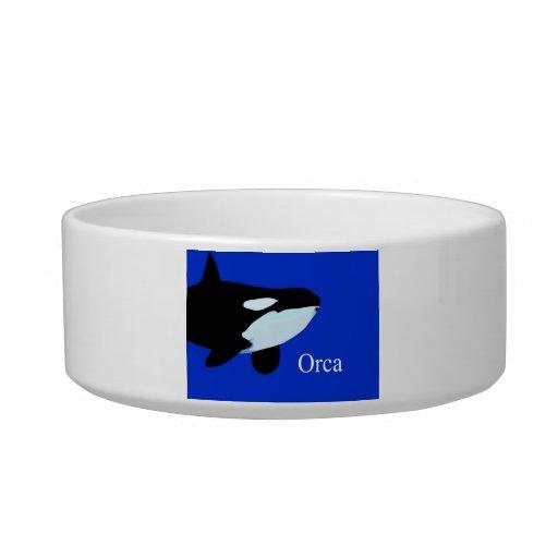 orca killer whale underwater graphic txt cat bowl