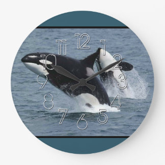Orca Killer Whales Breaching Large Clock