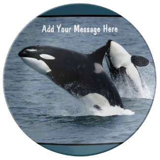 Orca Killer Whales Breaching Personalized Dinner Plate