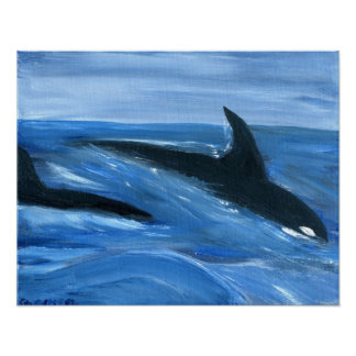 Orca killer whales print