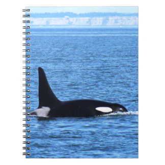 Orca Libretas