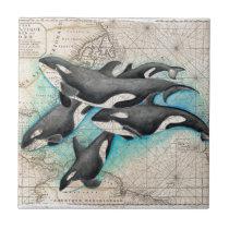 Orca Map Atlas Ceramic Tile