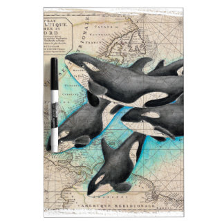 Orca Map Atlas Dry Erase Board