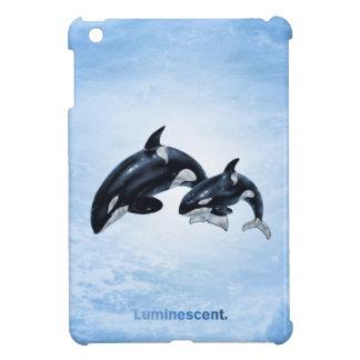 Orca - mini caso del iPad
