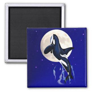Orca Moon Magnet