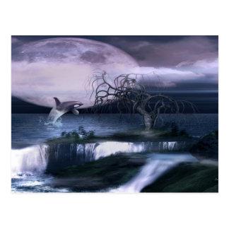 Orca Moon Postcard