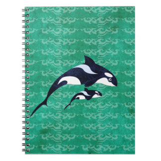 Orca Notebook