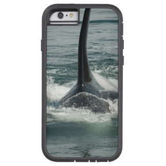 Orca on the hunt tough xtreme iPhone 6 case