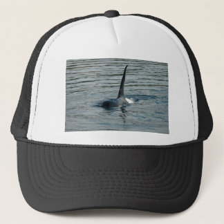Orca on the hunt trucker hat
