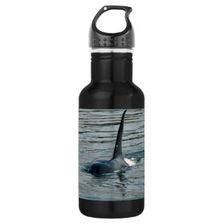 Orca on the hunt water bottle