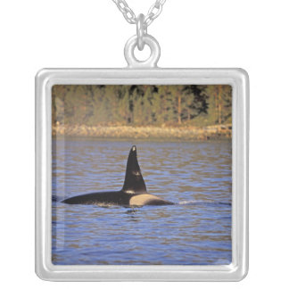 Orca or Killer whale. Personalized Necklace