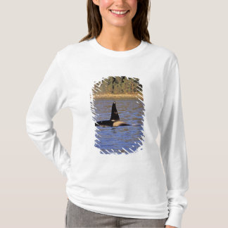 Orca or Killer whale. T-Shirt