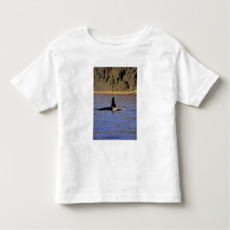Orca or Killer whale. Toddler T-shirt