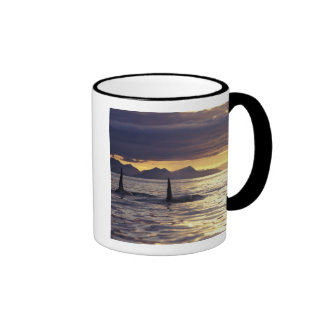 Orca or Killer whales Ringer Coffee Mug