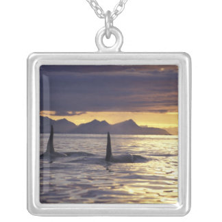 Orca or Killer whales Square Pendant Necklace