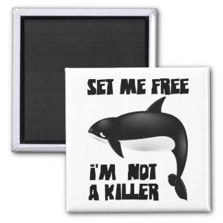 Orca - orca imán cuadrado