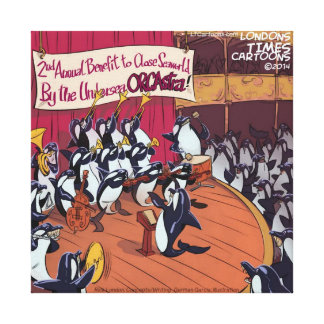 Orca Orchestra Funny Gallery Wrap Canvas